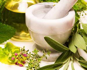 Köhögés csillapító gyógynövények